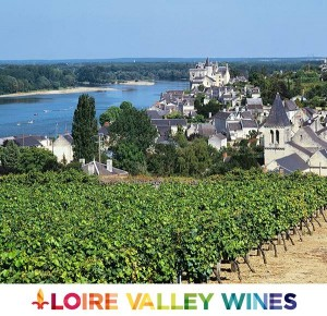 Loire Valley Wines logo pic