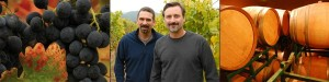 Skylark winemakers